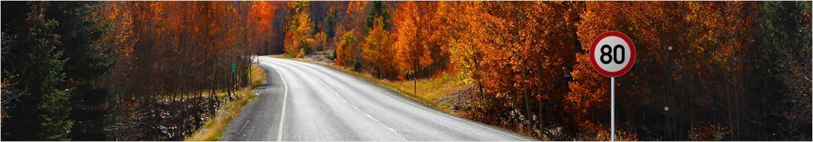 szosa jesienią